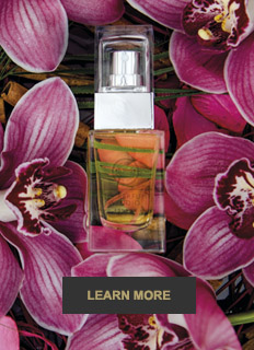 Shop our Design Your Own Fragrance Perfume Making Gift Sets - Exotic
